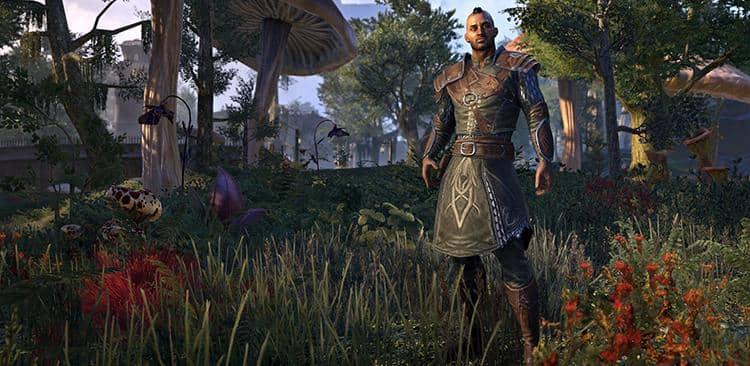 Eso Morrowind Discovery Pack Pre Order Bonus Guide