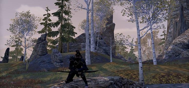 Battlemaster's Corner – The True Assassin - The Elder